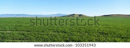 Spring Valley, Antelope Valley, California