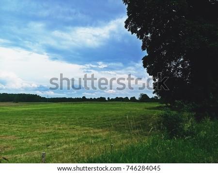 Spring view Zdjęcia stock ©