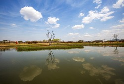 Spring view of Sotdae(pole bird made of wood signifying prayer for a good luck) on pond at Siheung Gaetgol Ecological Park near Siheung-si, South Korea