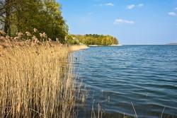 Springtime Plauer See, Mecklenburger Seenplatte,  Mecklenburg-Vorpommern, Northern Germany