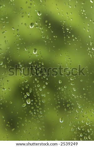 Springtime raindrops on window