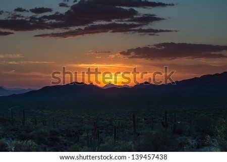 Springtime sunset in Saguaro National Park near Tucson, Arizona.