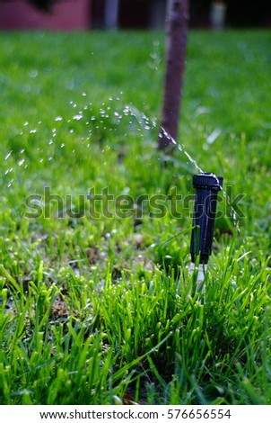 Sprinkler Closeup #576656554