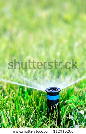 Sprinkler head spraying water on green lawn