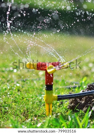 Sprinkler spraying water over green grass