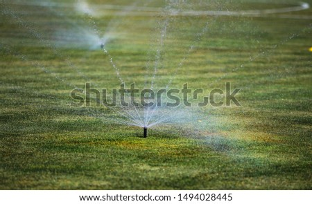 Sprinklers Automatic lawn grass irrigation system in stadium. Football, soccer field in small provincial town. Underground sprinklers spray water jets. Automation for watering and lawn care, gardening #1494028445