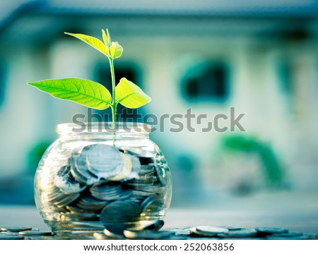 Sprout growing on glass piggy bank with home in saving money concept