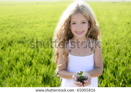 sprout plant growing from little girl hands outdoor rice field