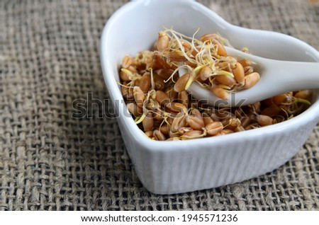 Sprouted wheat seeds in a white heart shaped bowl on a burlap cloth background.Wheatgerm. Healthy diet, vegetarian food or superfood concept with copy space.Selective focus. Stock photo ©