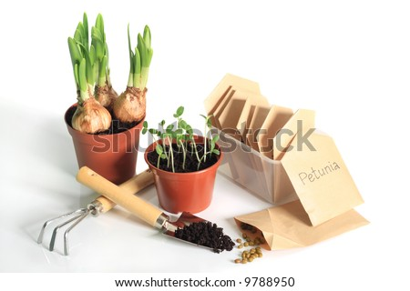 Sprouting bulbs, seedlings, seeds and garden tools - stock photo