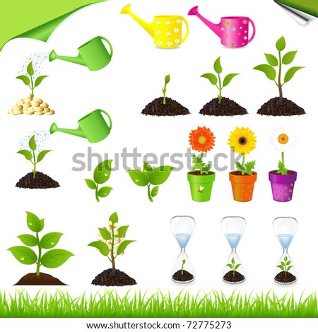 Sprouts, Watering ?ans, Sand-glass And Flowers In Pots