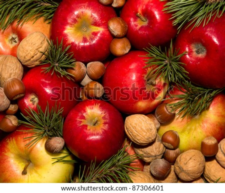spruce branches apples and nuts - stock photo