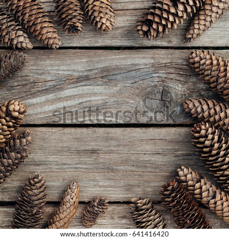 Spruce cones lie on a wooden texture background with copy space square #641416420