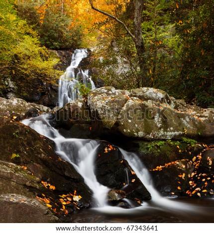 Spruce Flats Falls, smoky mountains national park, autumn colors.