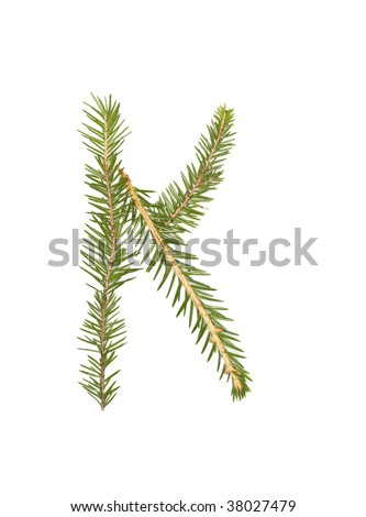 Spruce twigs forming the letter 'K' isolated on white
