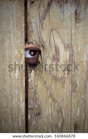 Spying through a hole in the wooden fence