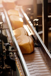 Square baked breads on conveyor automatic production line bakery from hot oven, top view.