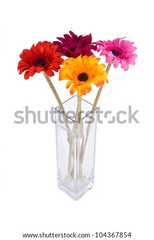 Square clear glass vase, with Gerbera flowers, isolated - stock photo