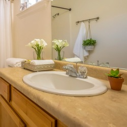 Square frame Cozy home bathroom interior decorated with lush green plants and white flowers