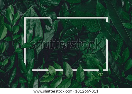 Square frame, Creative layout made of tropical flowers and leaves with paper card note. Flat lay. Blank for advertising card or invitation. Flat lay. Nature concept. Foto stock ©
