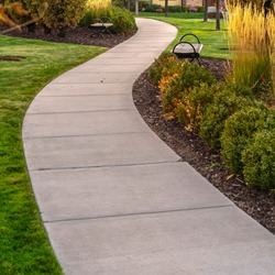 Square frame Paved walkway through a landscaped garden day