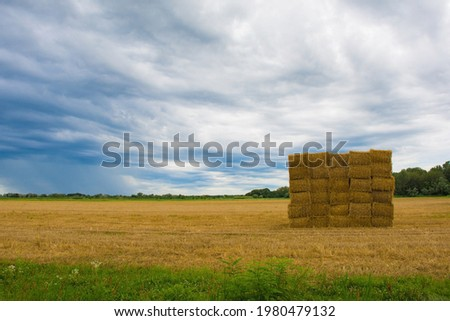 Square haystacks in a square arrangement on the north east Italian wetlands near Marina Julia, Friuli-Venezia Giulia Stock photo ©