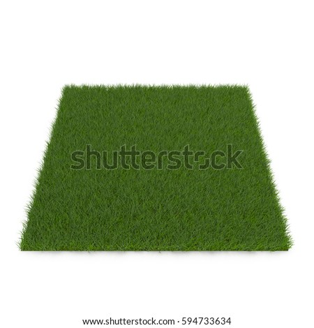 Square of  Grass field over white. 3D illustration