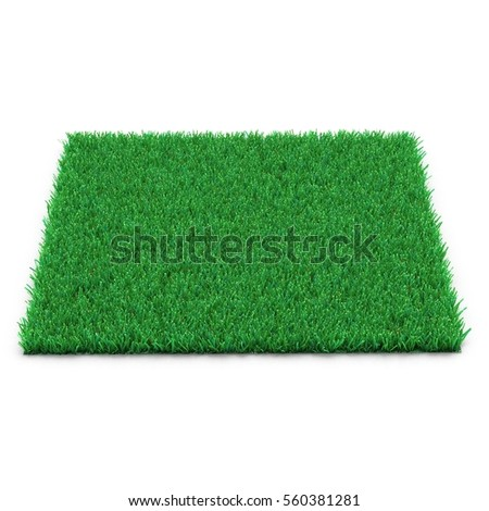 Square of Kentucky Bluegrass Grass field over white. 3D illustration