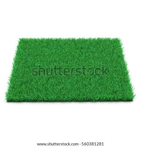 Square of Kentucky Bluegrass Grass field over white. 3D illustration