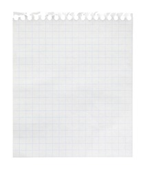 Squared paper loose-leaf note sheet isolated on white