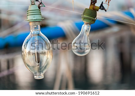 Squid fishing boat light bulb, this is used at night to attract the animals at the water surface