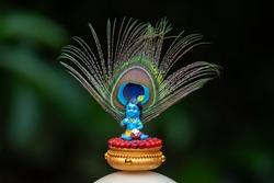 Sri Krishna statue with peacock feather