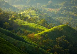 Sri Lanka landscapes nature background in morning lights