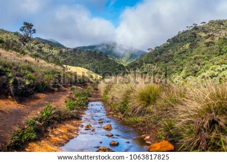 Srilanka Nature Horton #1063817825
