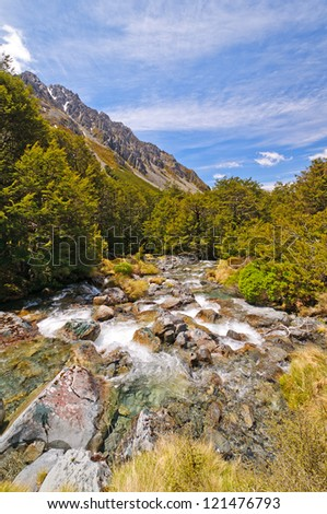 St Arnaud trail in Nelson Lakes National Park