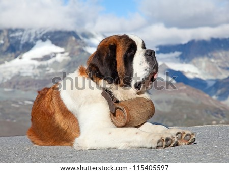 St. Bernard Dog with keg ready for rescue operation #115405597