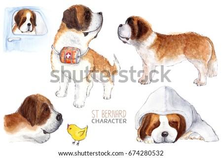 St bernard, watercolor dog character.