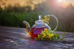 St. John's wort flowers and tea in glass teapot on wooben table on sunset.