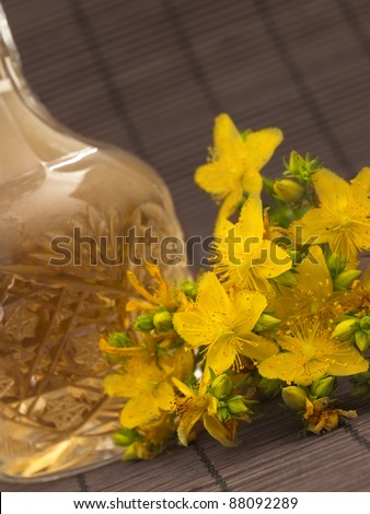 St John's wort with oil in the bottle