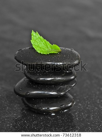 Stack of black wet pebbles with fresh green leaf
