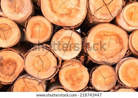 Stack of brown circle wood