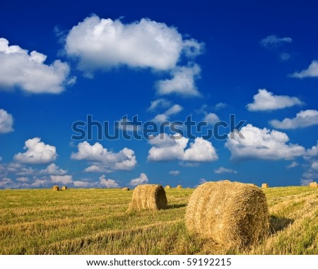 stack of hay  in a field