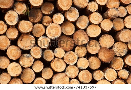Shutterstock stack of logs