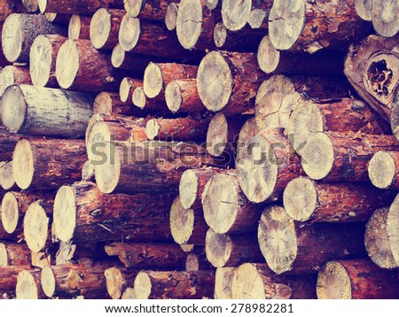 Stack of pine raw logs background, retro instagram style filtered