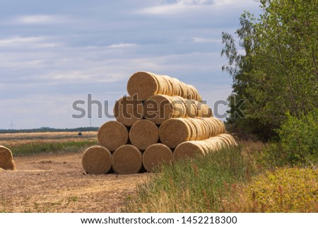 stacked bales of straw at the edge of a field #1452218300