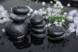 Stacked black pebble stones for massage in water and white flowers.Spa decoration or zen garden.