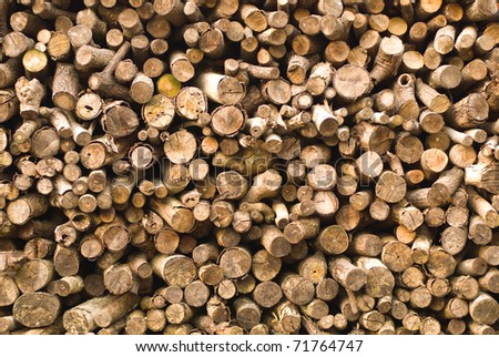 Stacked of timber logs, fuel for fire