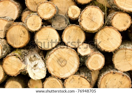 Stacked wooden logs, tree trunks