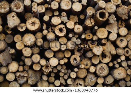 Stacking wood in stacks. Background - Image #1368948776