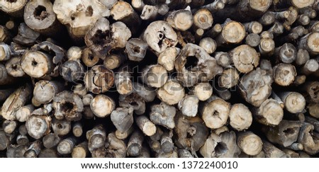 Stacking wood in stacks. Background - Image #1372240010